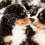 Se avecina el invierno… ¡5 razones para vender ahora!