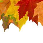 4 razones para vender este otoño [Infografía]