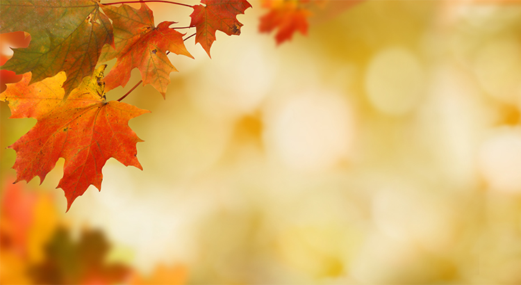4 Reasons to Sell This Fall  | Simplifying The Market