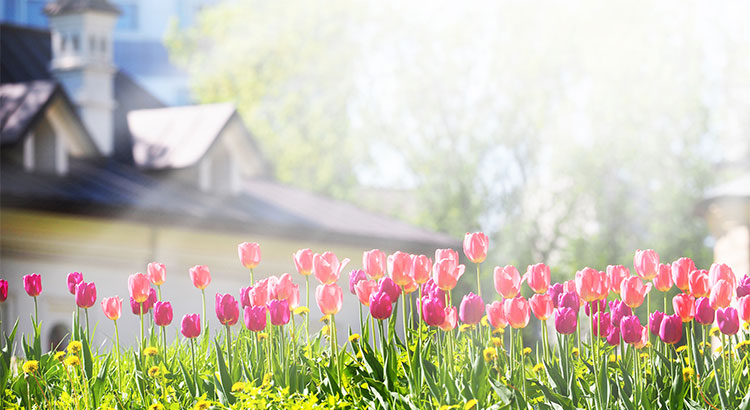 """The Housing Market Will """"Spring"""" Forward This Year! 