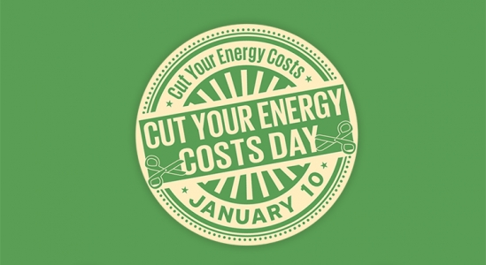 National Cut Your Energy Costs Day [INFOGRAPHIC]1 min read